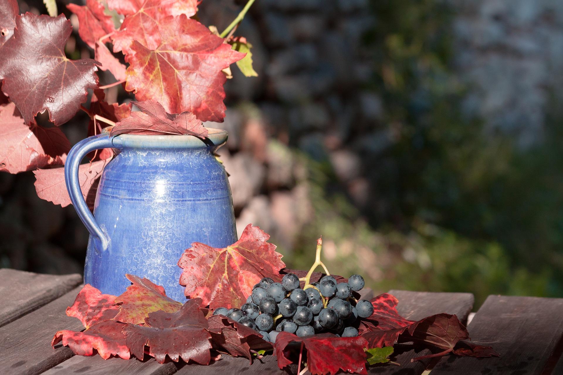 wine-1729459_1920