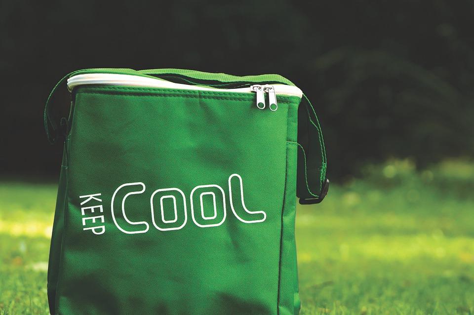 cooler-bag-4812757_960_720